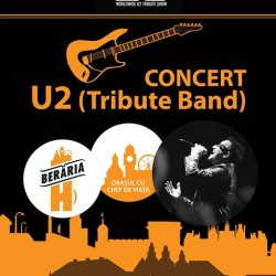Concert U2 Tribute Band
