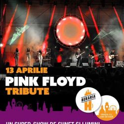 Pink Floyd Tribute Concert cu Pink Sonic (Italia
