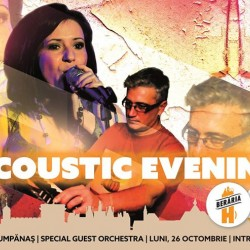 Acoustic Evening cu Andrada  Special Guest Orchestra